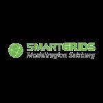 Smartgirds_Salzburg_logo